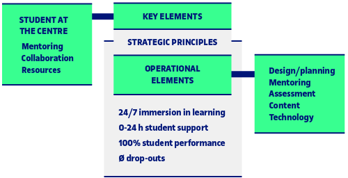 Key principles of the eLearn Center